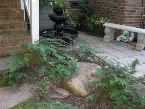 Kim Harrison's step garden
